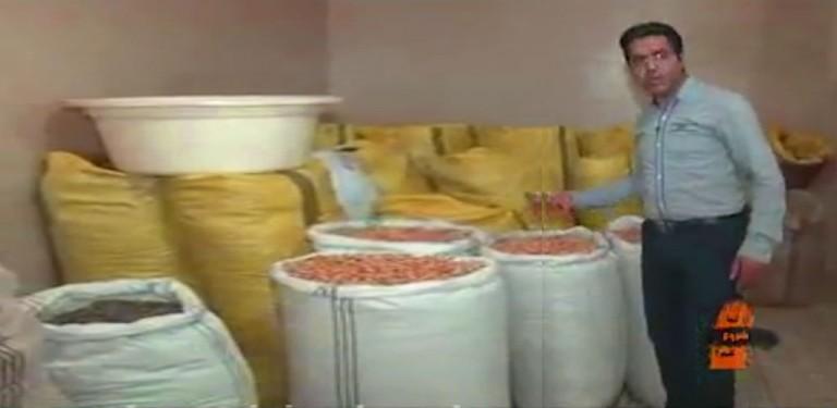 تولید و بسته بندی خشکبار کار با سرمایه کم