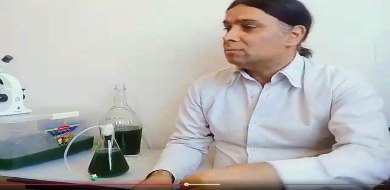 آموزش جلبک اسپیرولینا ویدئو تصویری